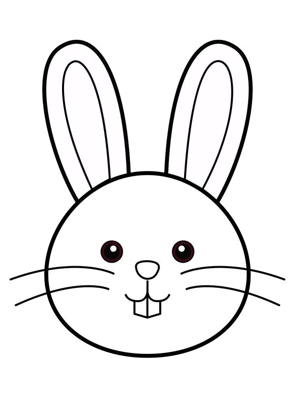 Activit s du mois - Un lapin dessin ...
